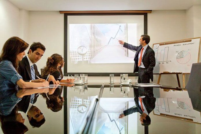 Project Management Professionals in Organizations