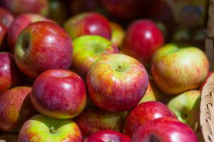 Apple varieties Cortland